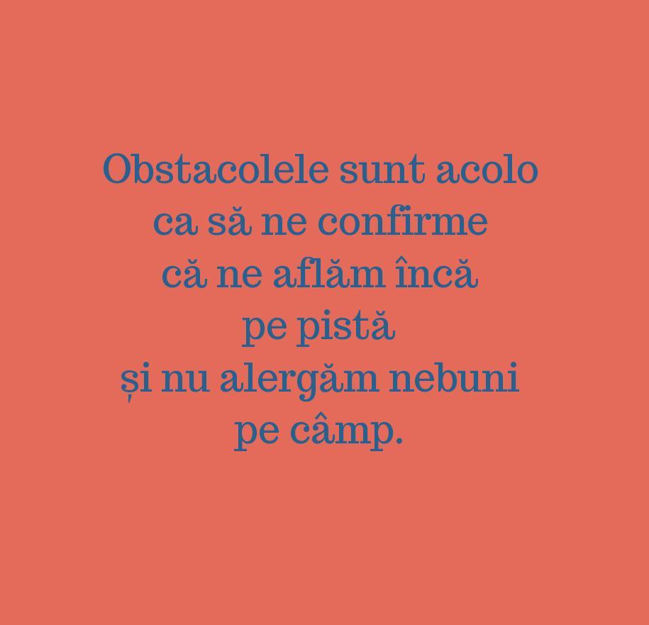 Obstacolele sunt acolo \n ca să ne confirme că ne aflăm încă pe pistă \n și nu alergăm nebuni pe câmp.